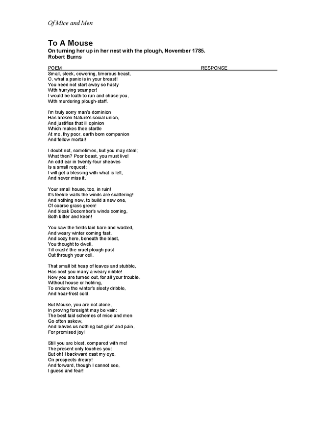 of mice and men to a mouse poem response preview image 2