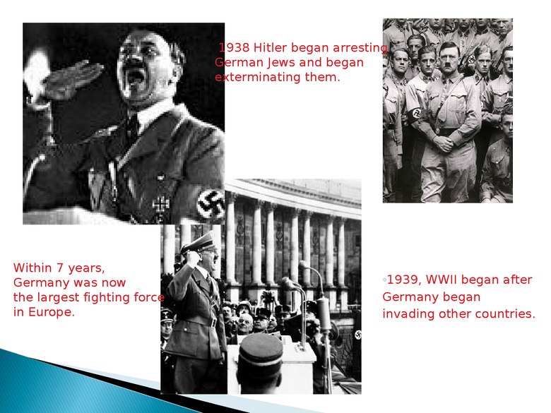 holocaust powerpoint preview image 3