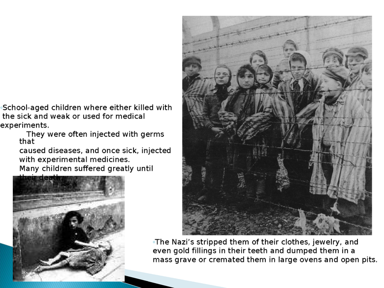 holocaust powerpoint preview image 6