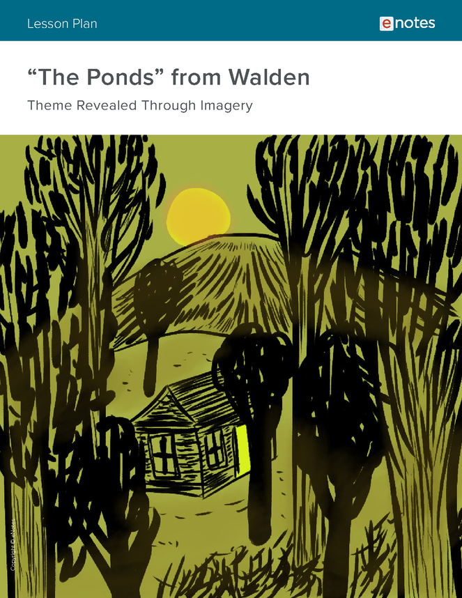 walden themes lesson plan preview image 1