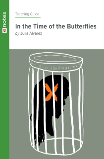 Cover image of In the Time of the Butterflies eNotes Teaching Guide