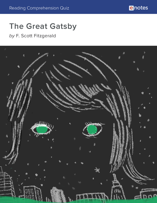 the great gatsby reading comprehension quiz preview image 1
