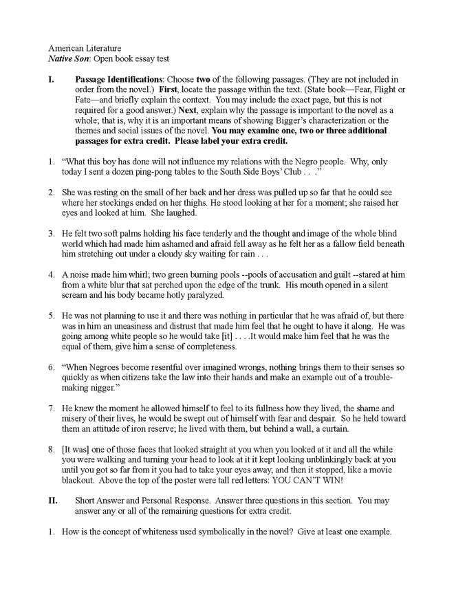 native son essay questions preview image 1