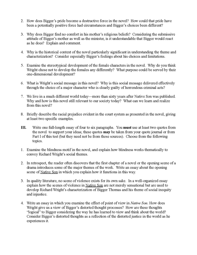 native son essay questions preview image 2