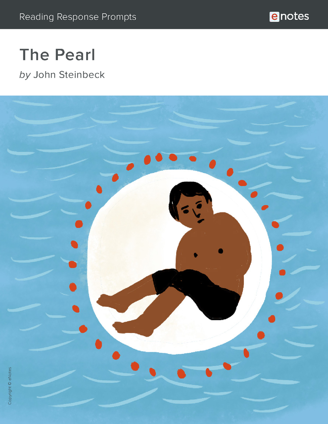 the pearl enotes reading response prompts preview image 1
