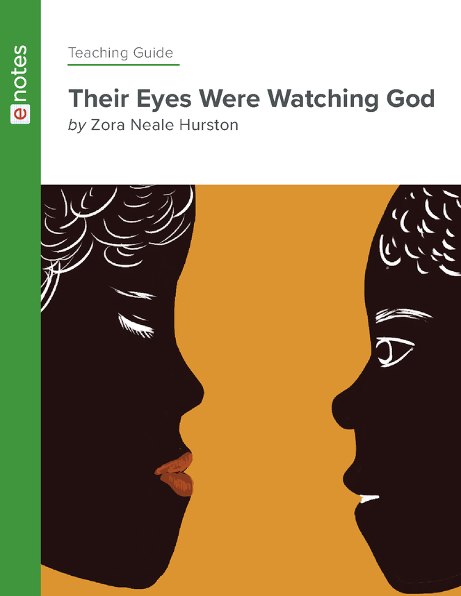 their eyes were watching god enotes teaching guide preview image 1