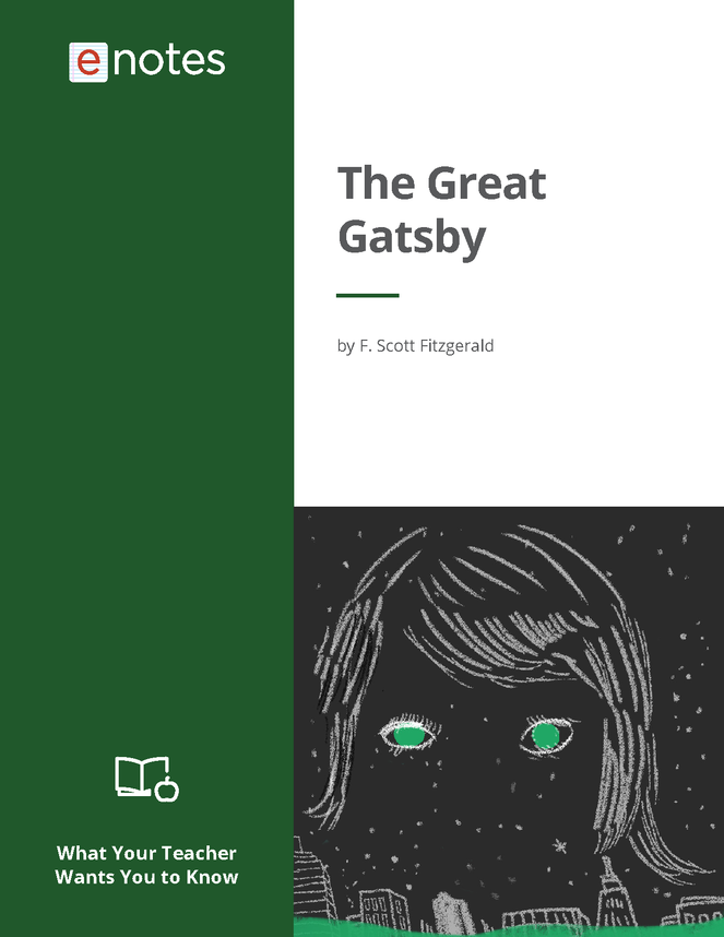 what your teacher wants you to know about the great gatsby preview image 1
