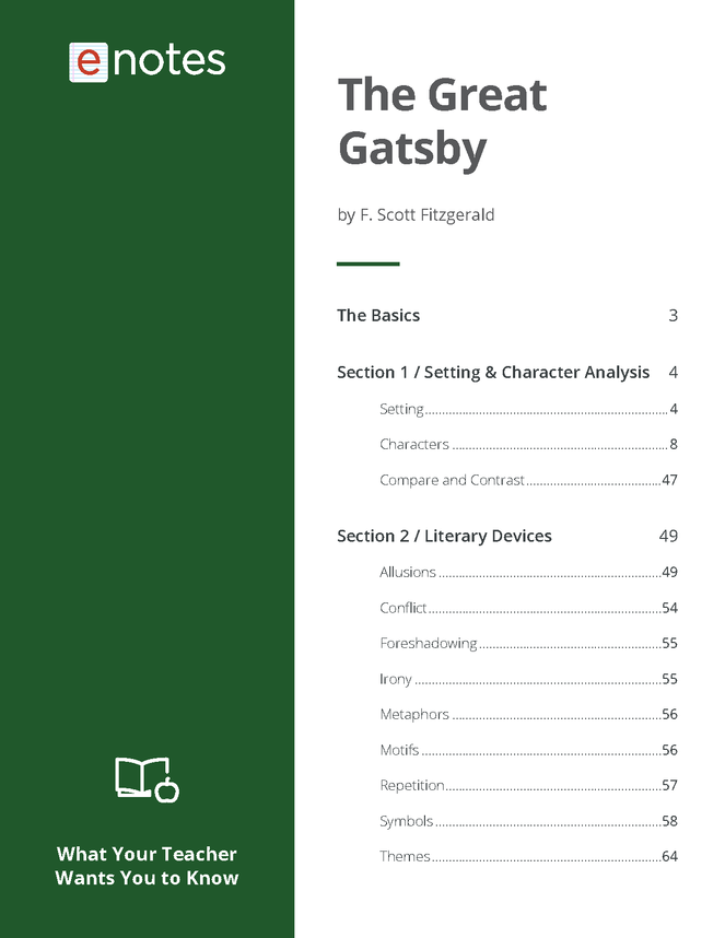what your teacher wants you to know about the great gatsby preview image 2