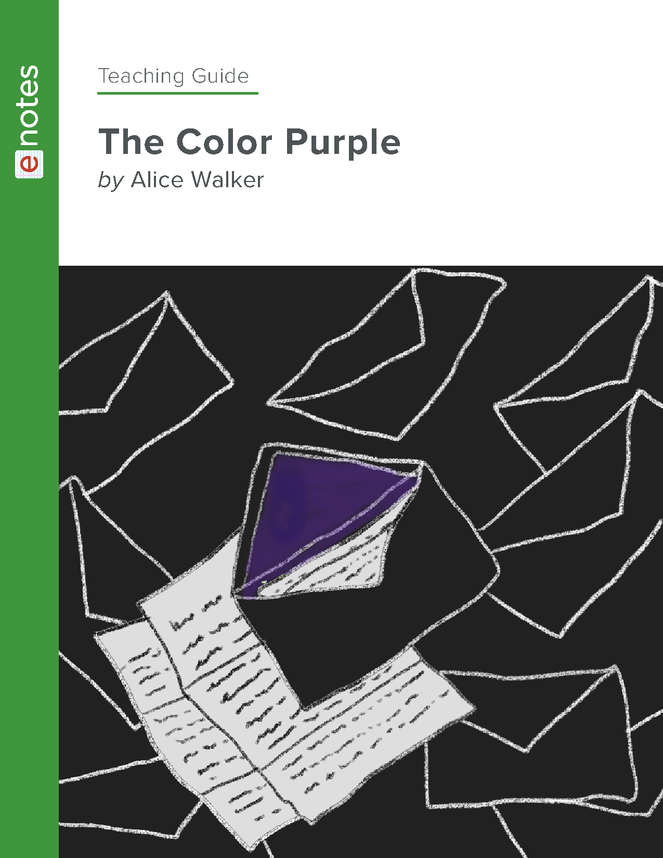the color purple enotes teaching guide preview image 1