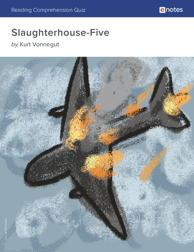 slaughterhouse-five reading comprehension quiz preview image 1