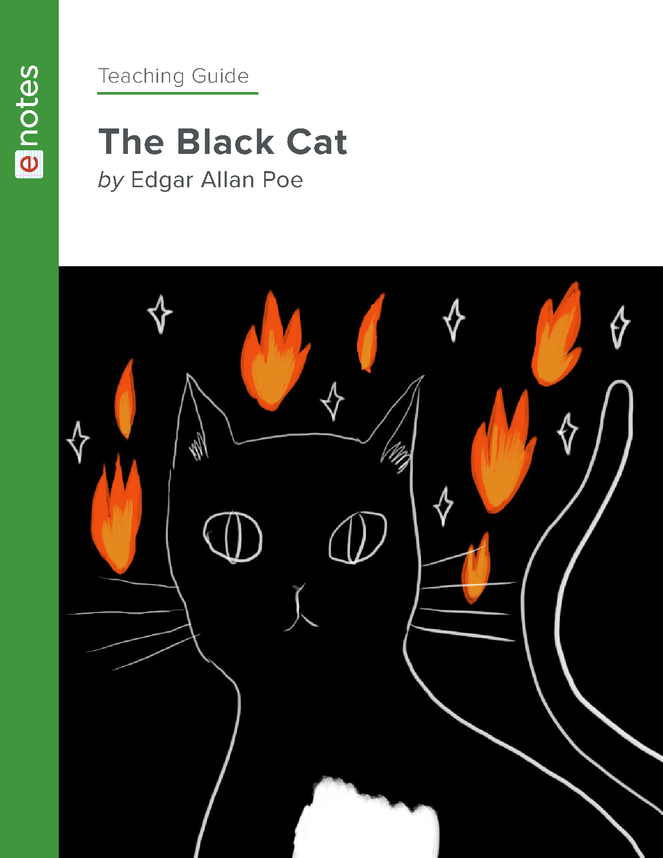 the black cat enotes teaching guide preview image 1