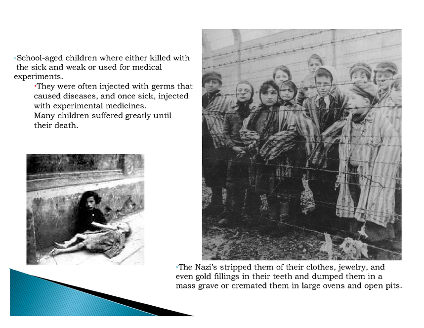 brief holocaust history ppt preview image 6