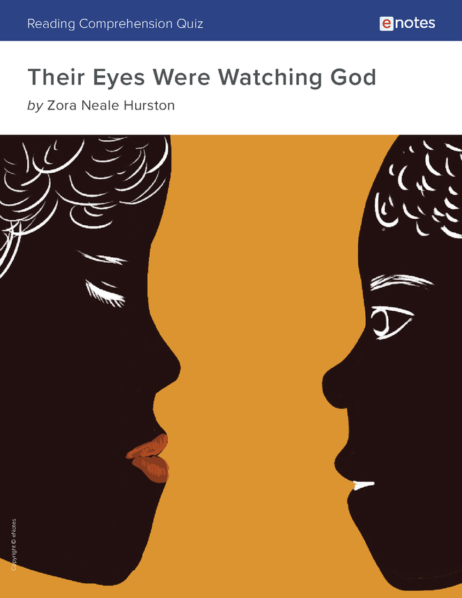 their eyes were watching god reading comprehension quiz preview image 1