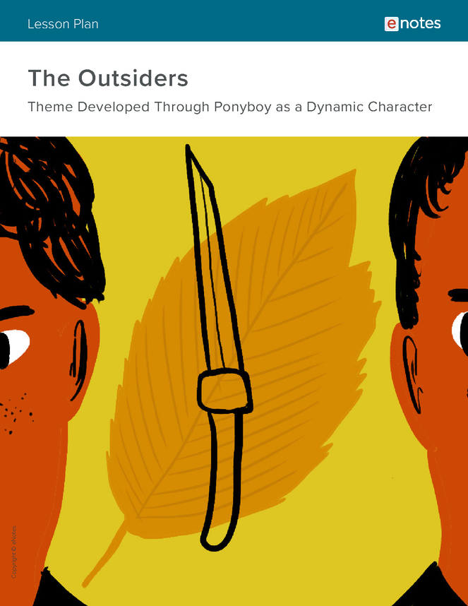 the outsiders themes lesson plan preview image 1