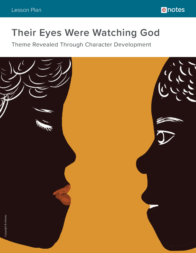 their eyes were watching god themes lesson plan preview image 1