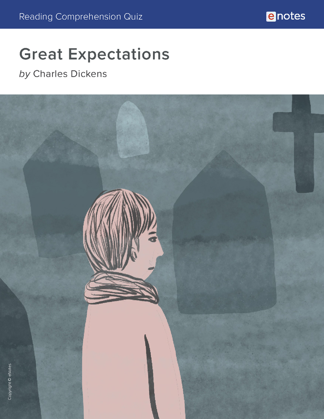 great expectations reading comprehension quiz preview image 1