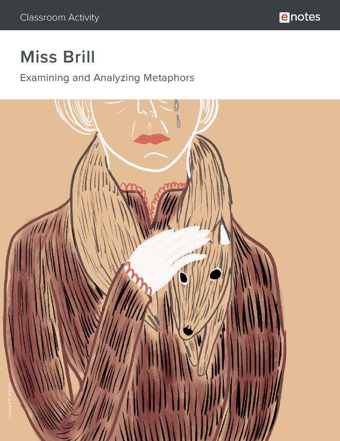 miss brill metaphor activity preview image 1