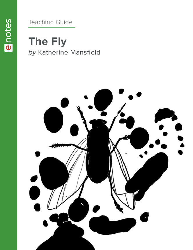 the fly enotes teaching guide preview image 1
