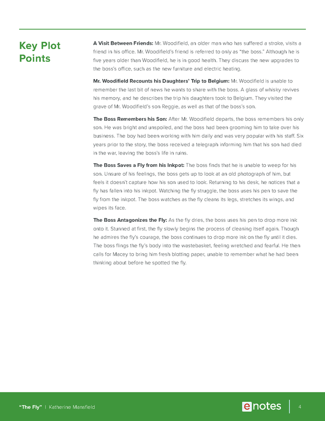 the fly enotes teaching guide preview image 4