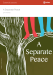 Image for A Separate Peace eNotes Essential Lessons